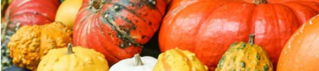 2 modes de cuisson possibles pour cuire les courges et pour la patate douce